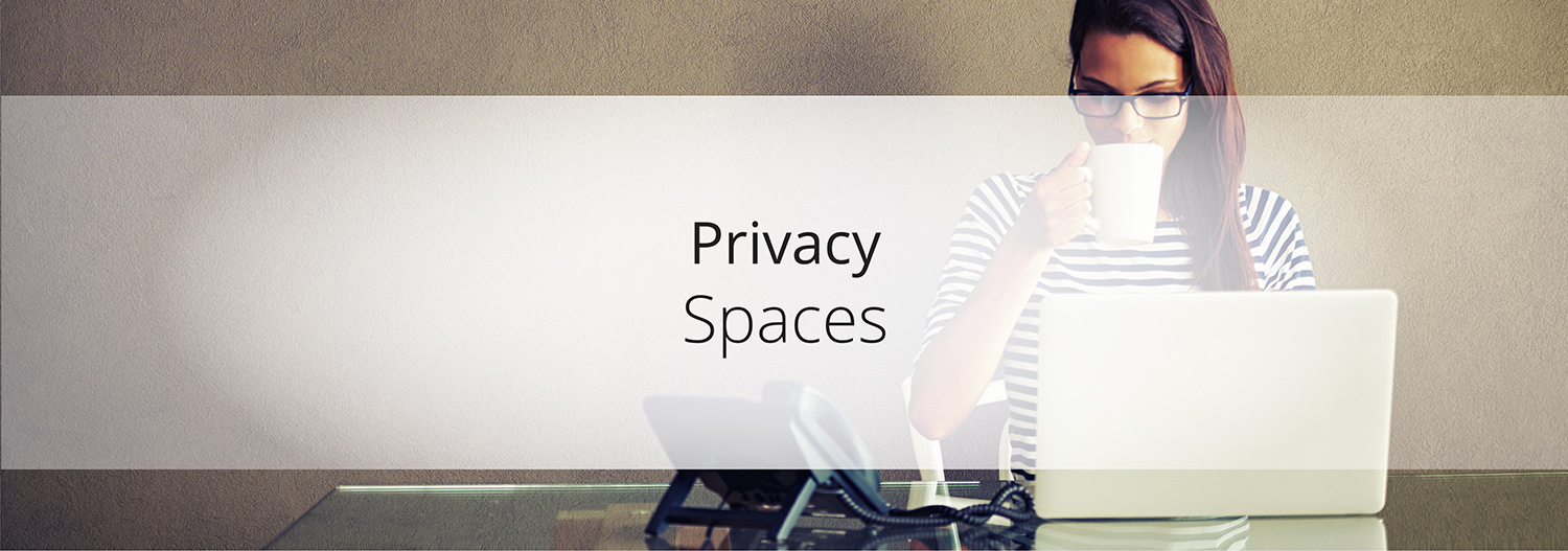 Privacy-Spaces